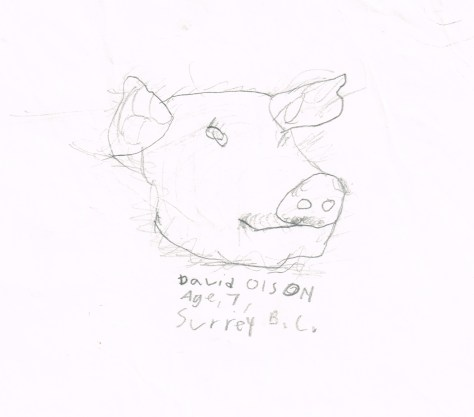 Drawing: Pig head, David Olson, Age 7, Surrey, BC