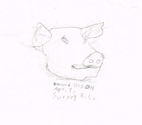 Drawing: Pig head, David Olson, Age 7, Surrey, BC
