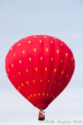 QuickChek Balloonfest 2009 - 010