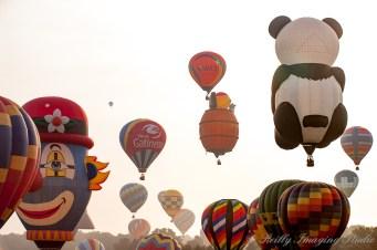 QuickChek Balloonfest 2009 - 019