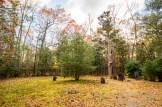 Atlantic County Park - Estell Manor - 02