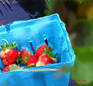 strawberry photography, strawberry art, strawberries
