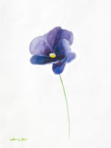 """watercolor flower painting"", ""watercolor floral painting"""
