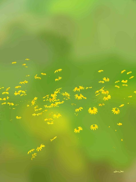 flower art, floral art, floral photography, flower photography, yellow flowers