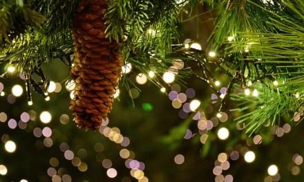 Wesołych Świąt Bożego Narodzenia 2018!