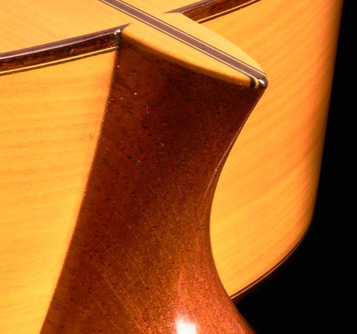 David Guitars 2020