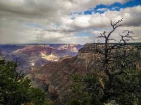 Paysage du Grand-Canyon, aux États-Unis.