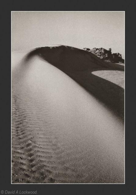 Sand dune - Brown tone copy