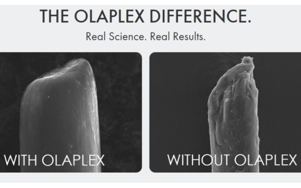 how does olaplex work