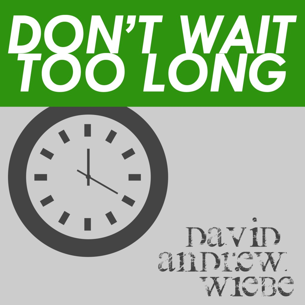 Don't Wait Too Long single by David Andrew Wiebe