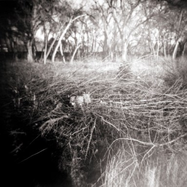 © David Ondrik 2008