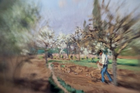 Borrowed Source: Orchard Detail, Camille Pissarro, (French, 1830-1903), Orchard in Bloom, Louveciennes 1872,19th Century, National Gallery of Art.