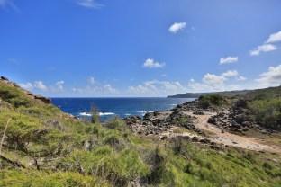 The windswept coast of Maui's west side
