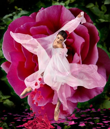 """State Street Ballet - """"Secret Garden"""" publicity photo 9/14/11"""
