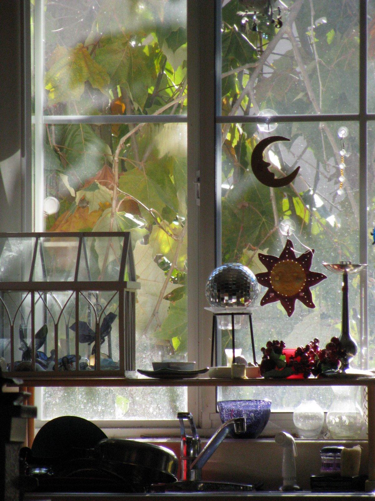 View through Bairbre's kitchen window