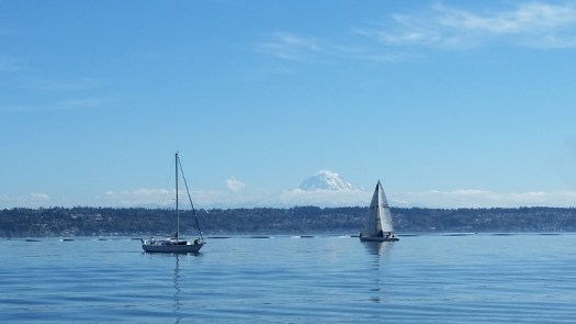 The Puget Sound and Mount Rainier