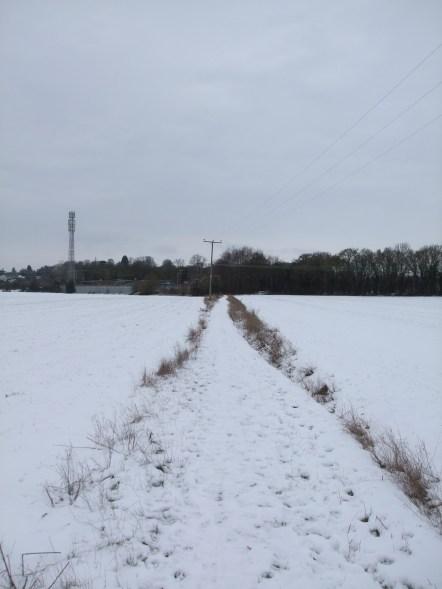 Walking Home for Christmas 048