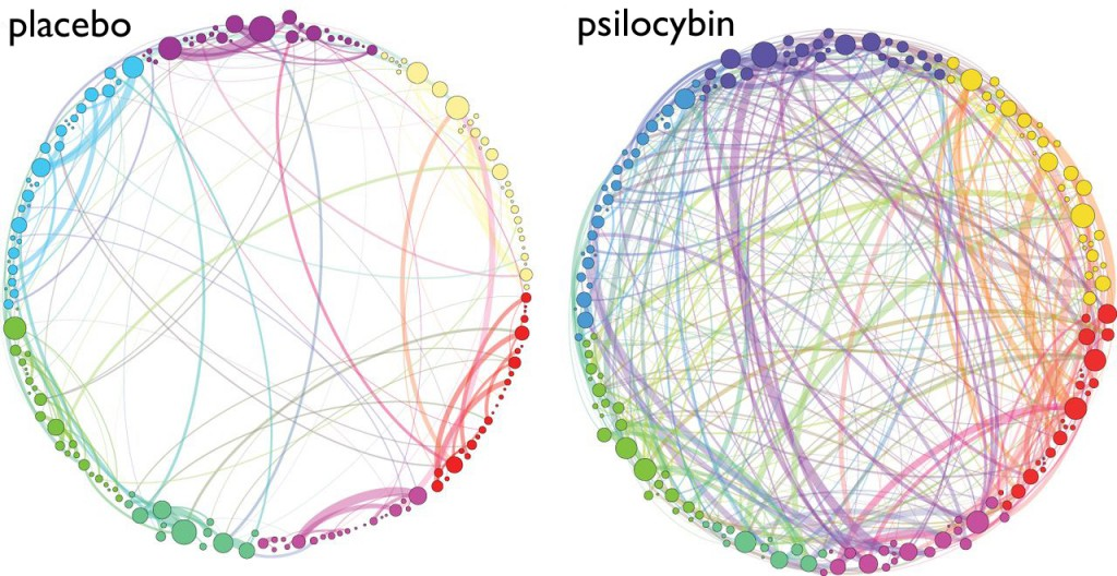 Brain Network Connectivity - Placebo and Psilocybin
