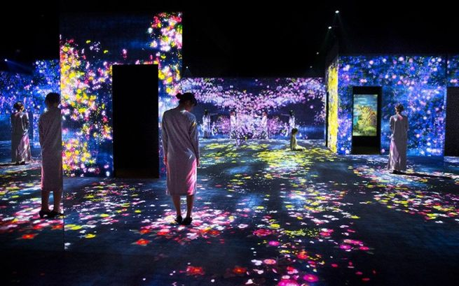 forest projection mapping