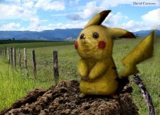 Pikachu_real