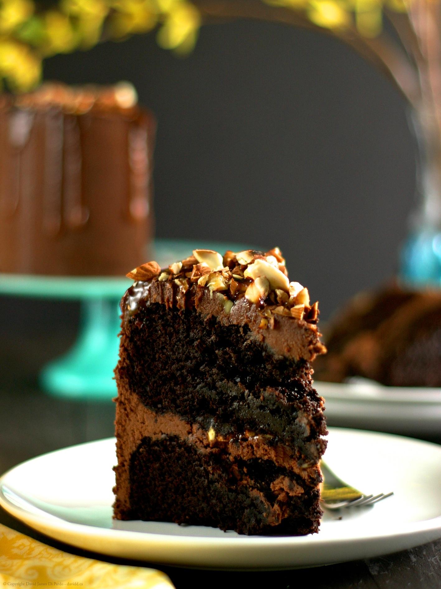 Vegan Gluten-Free Salted Almond Chocolate Cake
