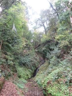 Le cascate che un tempo rifornivano d'acqua la distilleria