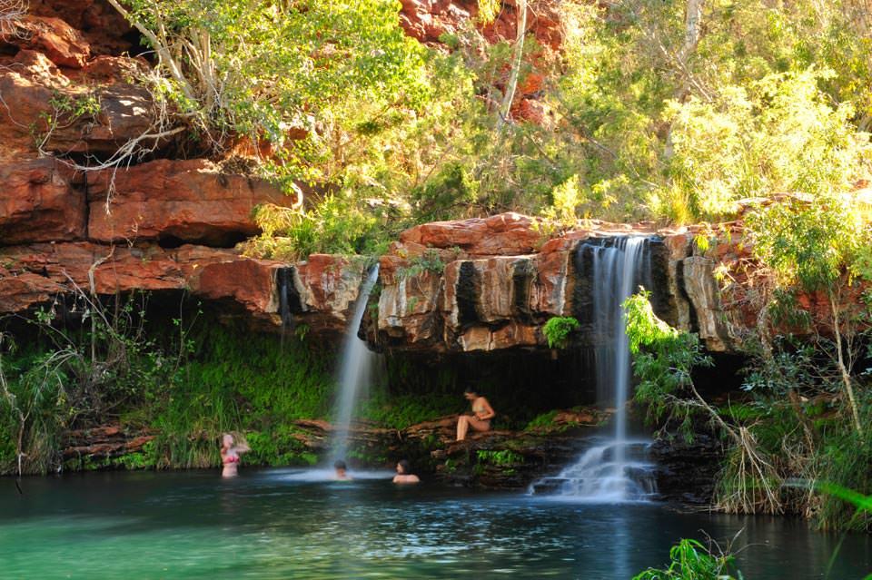 dsc4333_take-a-dip-in-kariniji-national-park-fern-pools