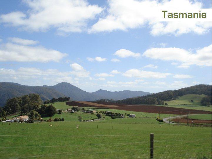 16-tasmanie