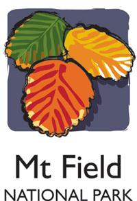 mt_field_icon