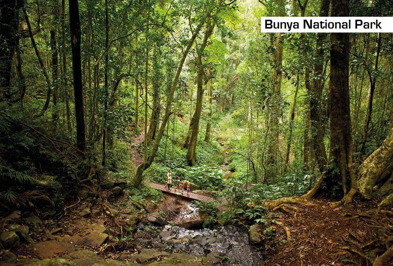 Bunya Mountains National Park