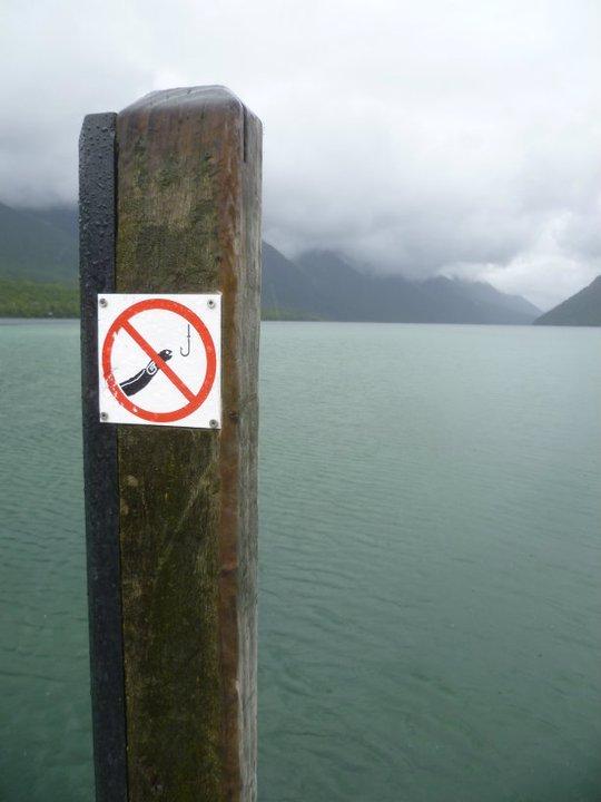 Tu peux tout pêcher...mais pas ça!