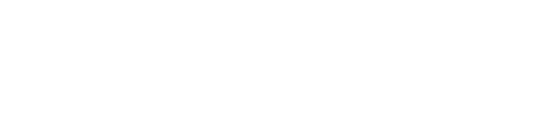 David Green Logo White