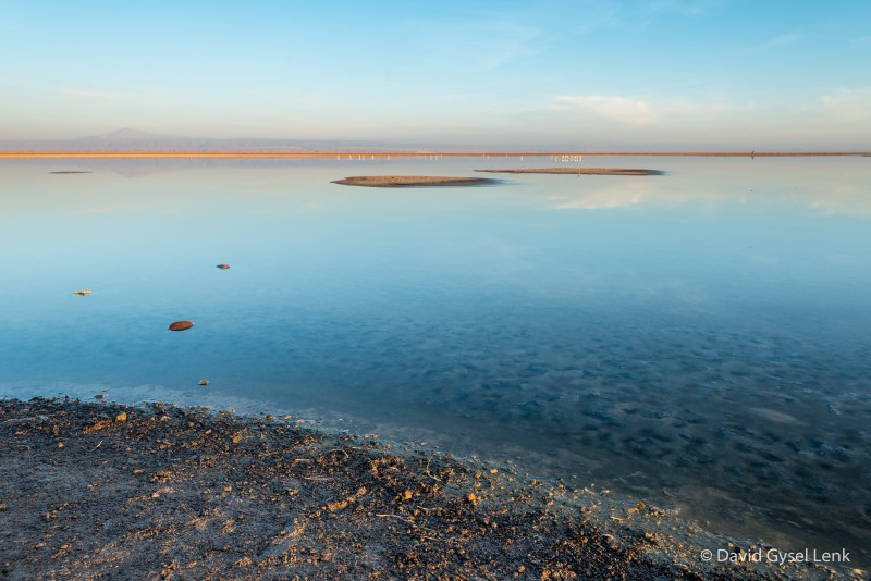 Laguna Chaxa, Salar de Atacama, Chile