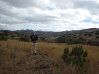 Chihuahuan Desert Research Institute, Fort Davis, Texas