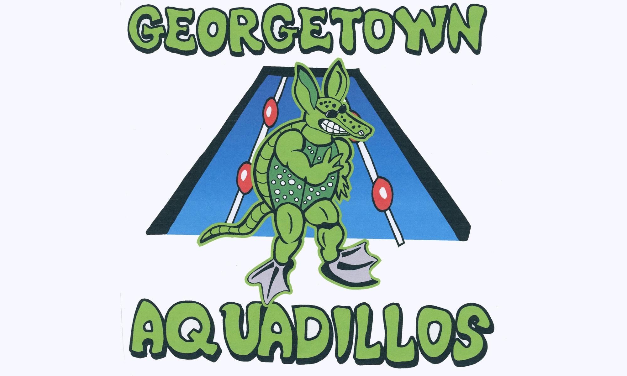 2008 Georgetown Aquadillos Logo