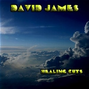 Album Healing Cuts CD By David James In Boston