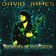 Rocking In The Grain Cd By David James In Boston 1996
