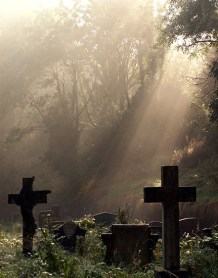 arnos-vale-cemetary-crucifix-headstones-in-forest-sunbeams