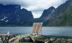 travel photo arctic circle Norway - stockfish drying beside a fjord - image copyright David J Rodger
