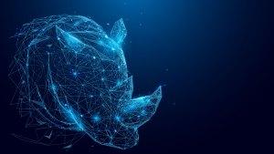 Rhino Innovations Group key art