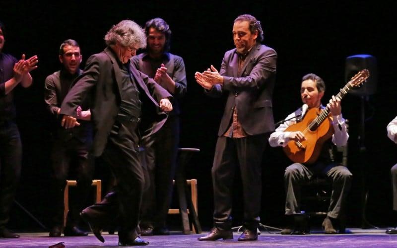 Resultado de imagen de palmero flamenco