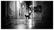 Dubrovnik_rano_3_result