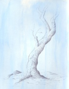 Silverpoint on Paper