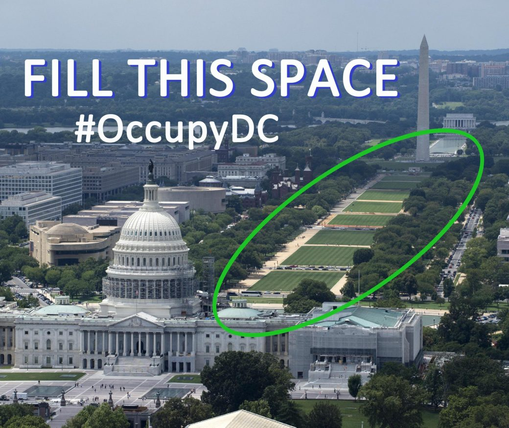 View of the US Capitol and the National Mall with the mall lawn circled and text encouraging Democrats to Fill This Space and #OccupyDC