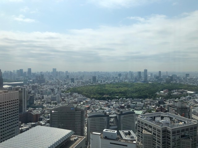 View from the Tokyo Metropolitan Government building observation deck (2019).