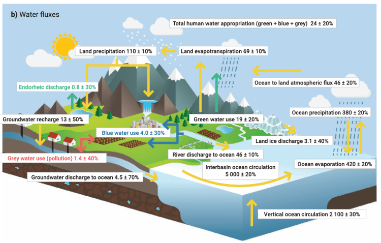 Diagram of the global hydrological cycle in the Anthropocene (UN, 2020).
