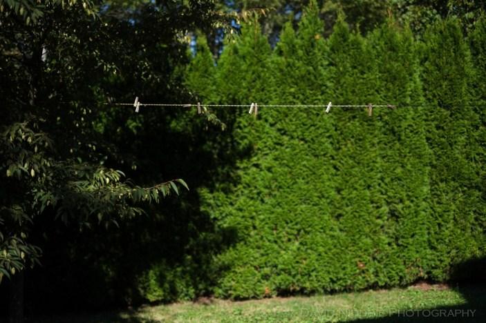 davidniddrie_woodlandgarden_autumn-9787