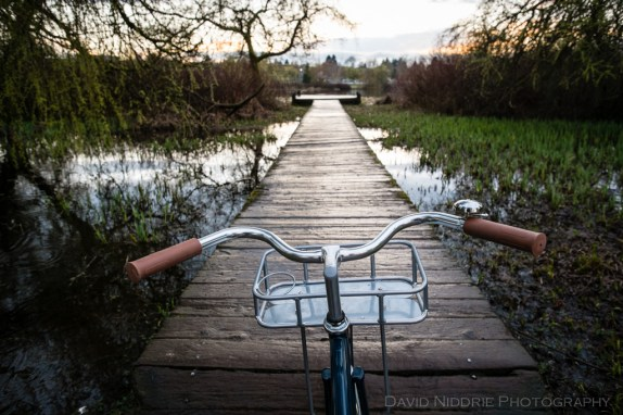davidniddrie_bicycle_state-2329
