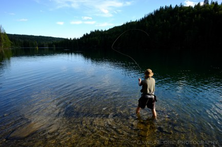 A man fly fishes on the Clearwater River.