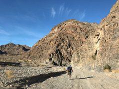 Hiking Cottonwood/Marble Canyon